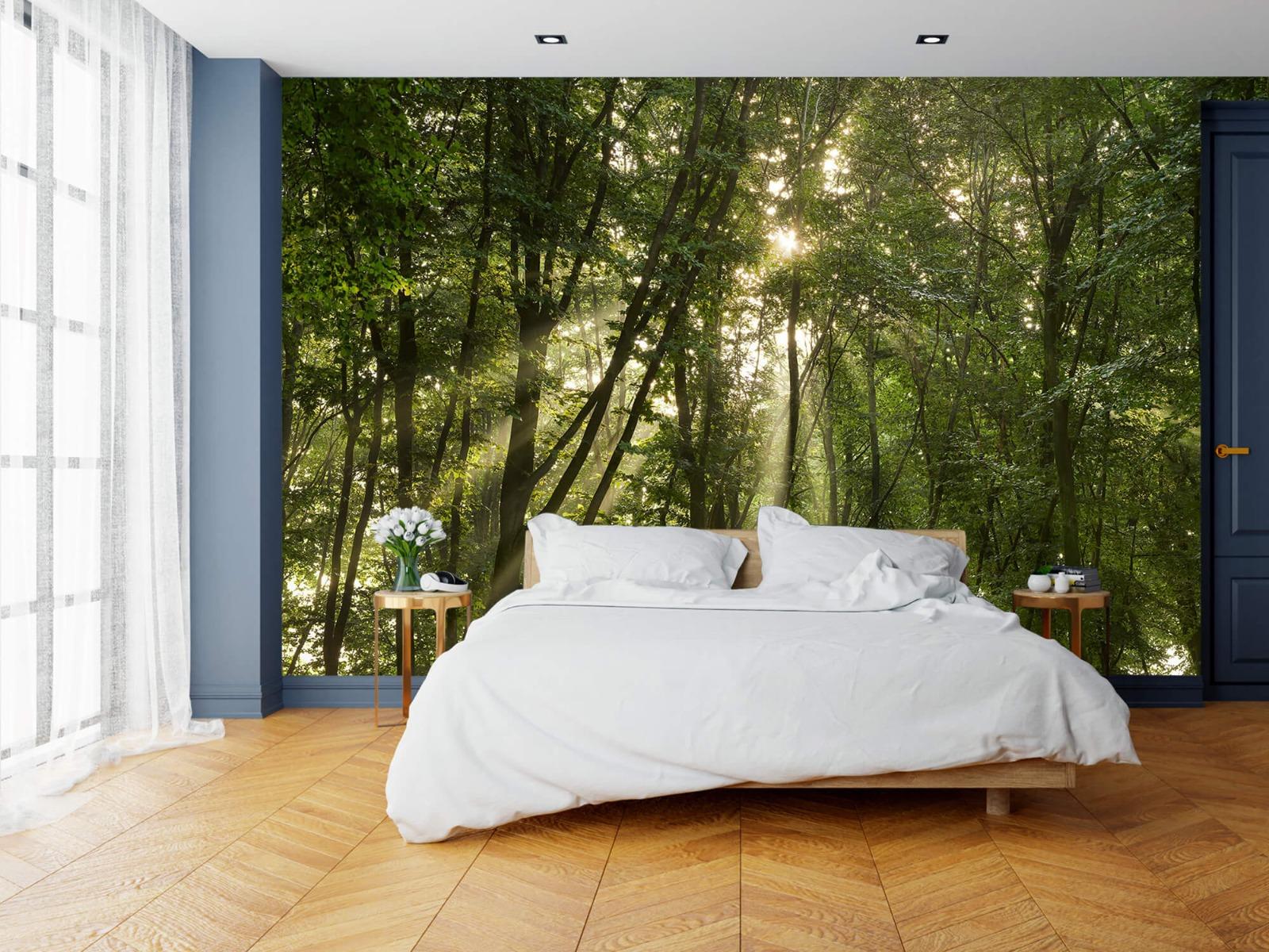 Bomen - Zonnestralen in het bos - Slaapkamer 15