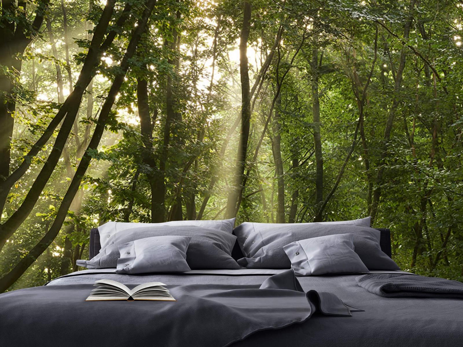 Bomen - Zonnestralen in het bos - Slaapkamer 17