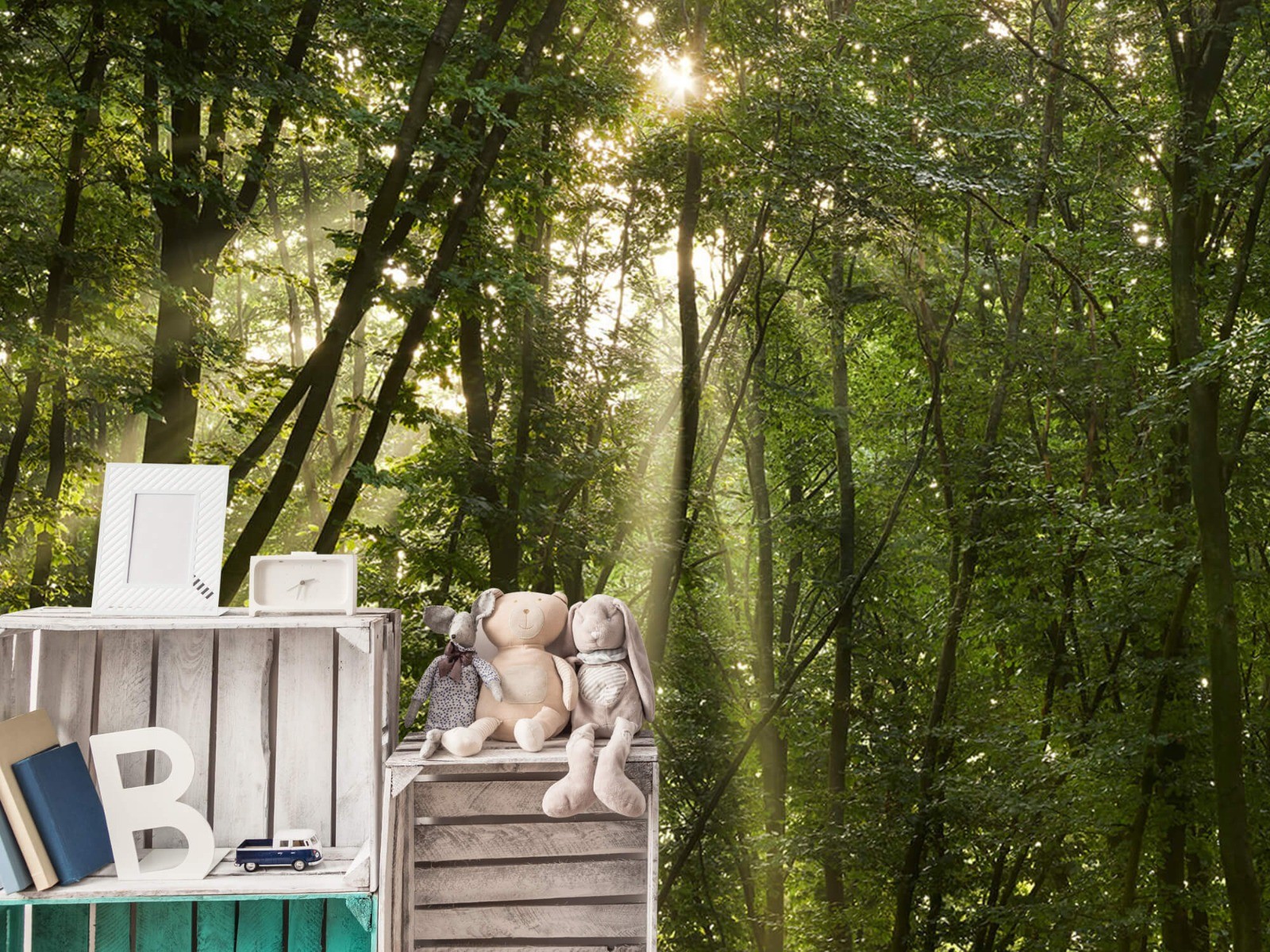 Bomen - Zonnestralen in het bos - Slaapkamer 19