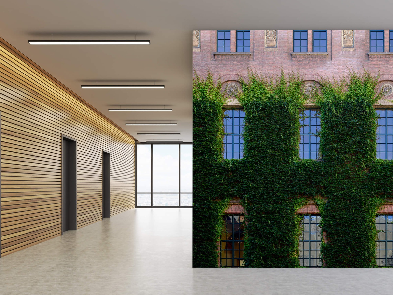 Gebouwen - Klimop op een muur - Woonkamer 5