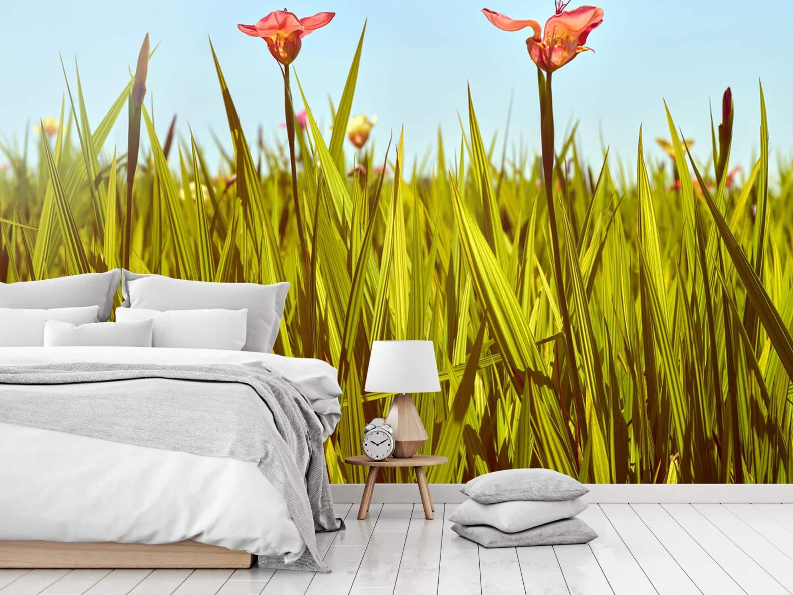 Overige - Bloemenveld - Slaapkamer 14