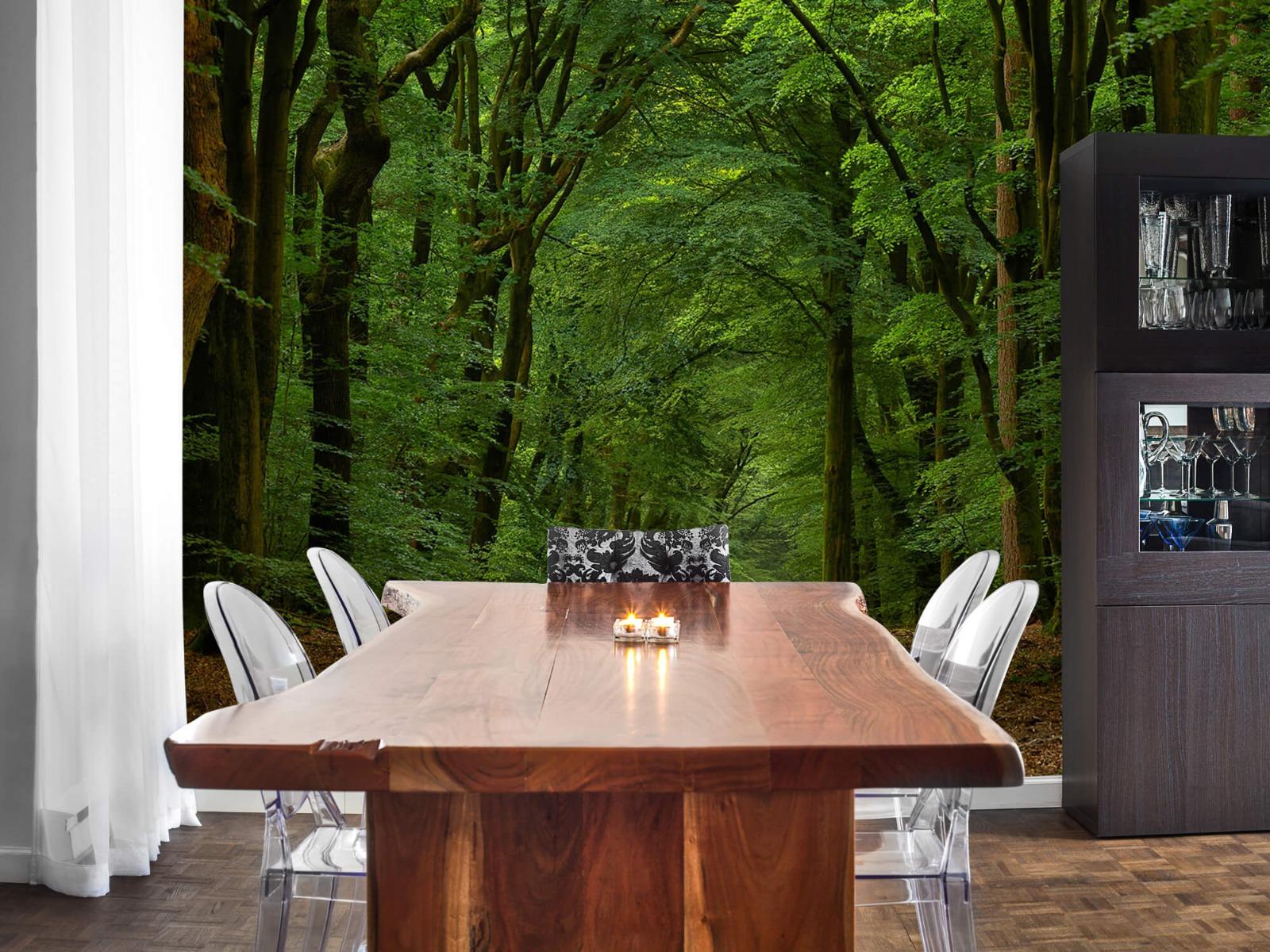 Bomen - Weg door het bos - Slaapkamer 7
