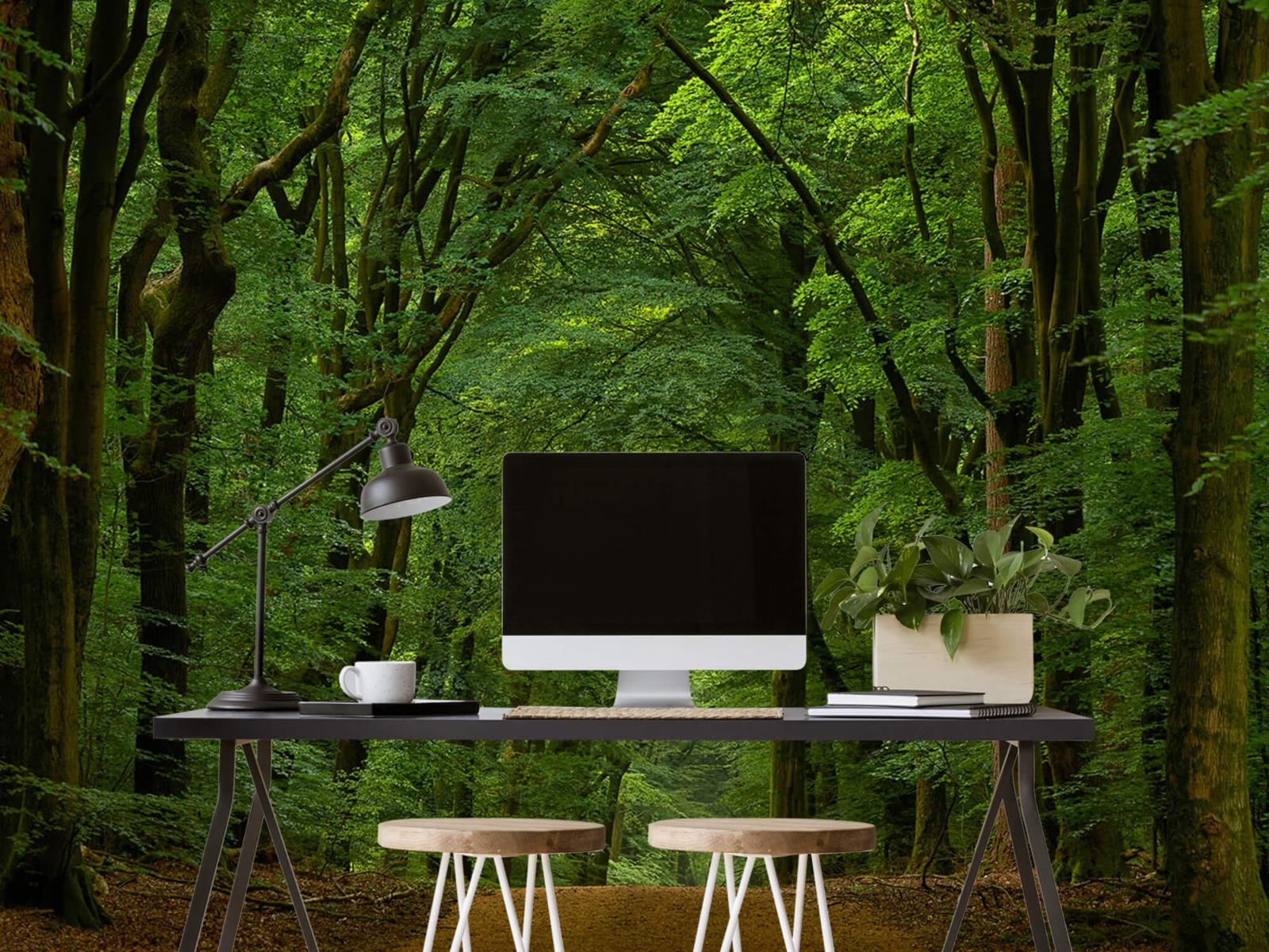Bomen - Weg door het bos - Slaapkamer 11