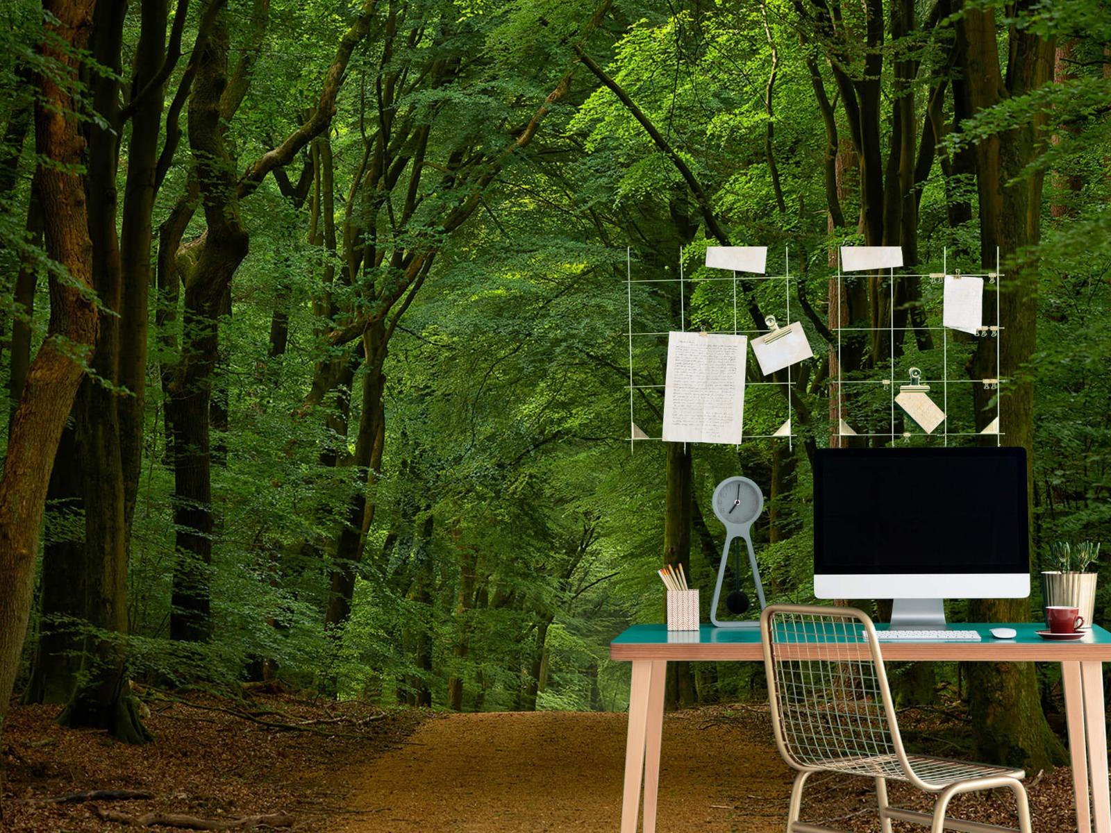 Bomen - Weg door het bos - Slaapkamer 12
