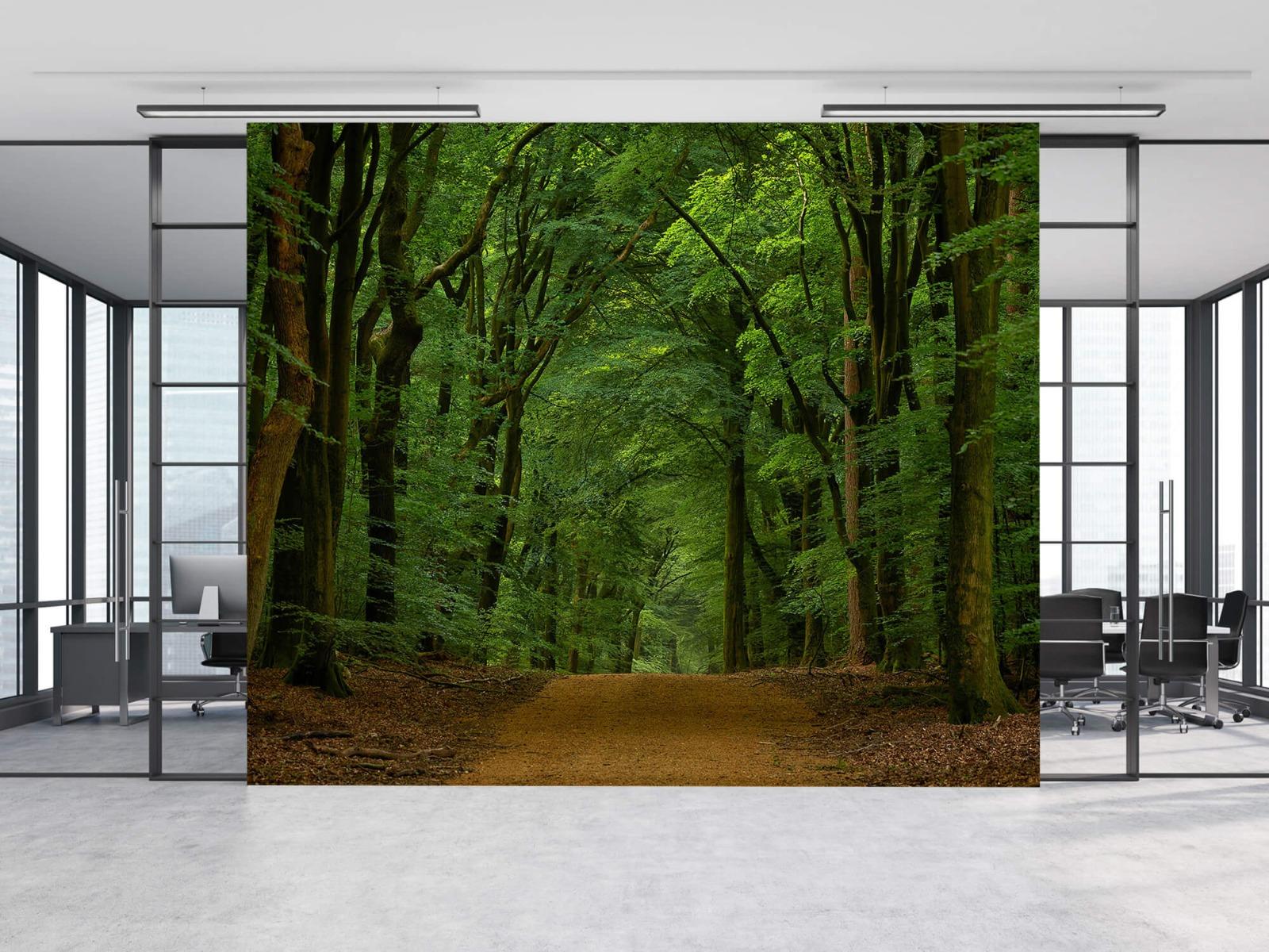 Bomen - Weg door het bos - Slaapkamer 13