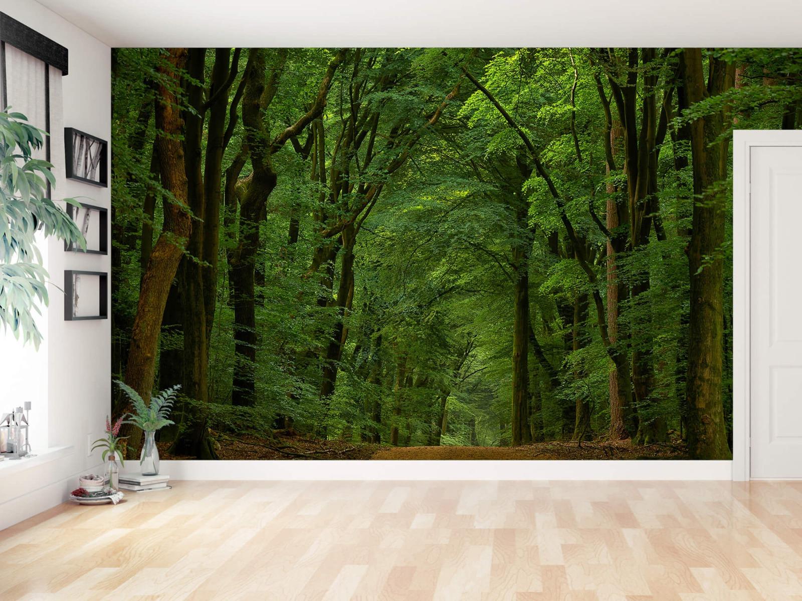 Bomen - Weg door het bos - Slaapkamer 16