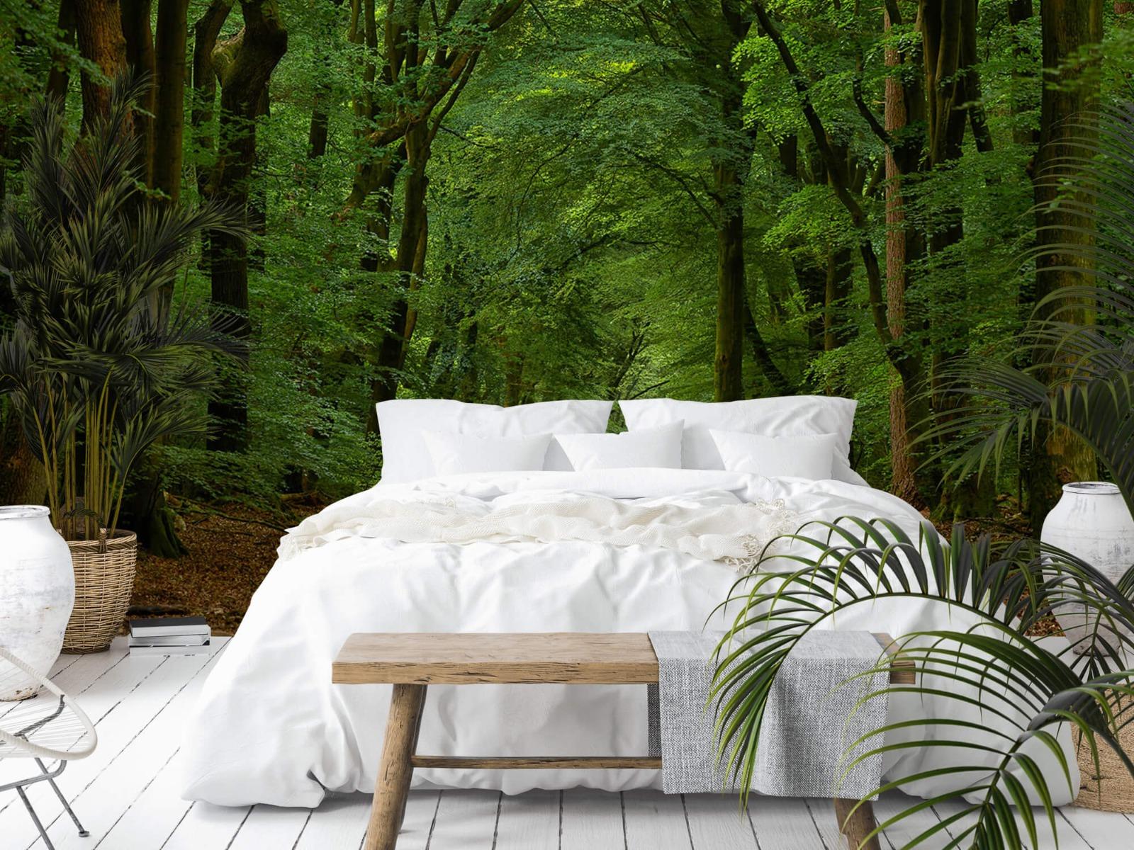 Bomen - Weg door het bos - Slaapkamer 18