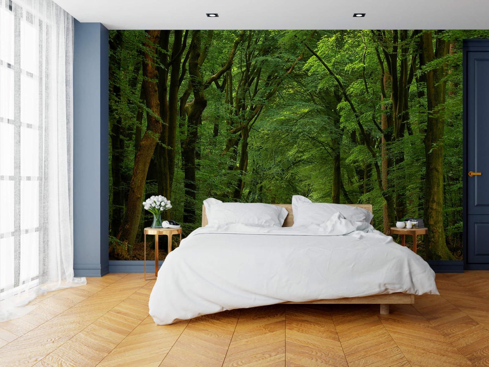 Bomen - Weg door het bos - Slaapkamer 19