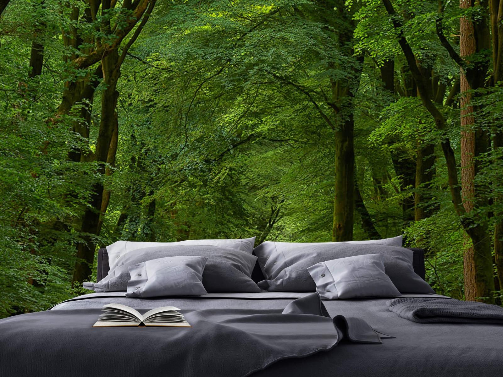 Bomen - Weg door het bos - Slaapkamer 4