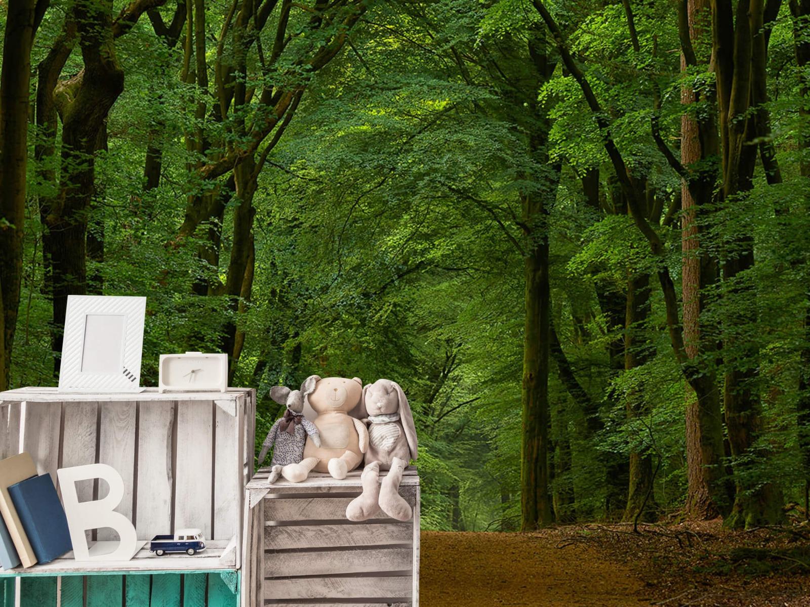 Bomen - Weg door het bos - Slaapkamer 6