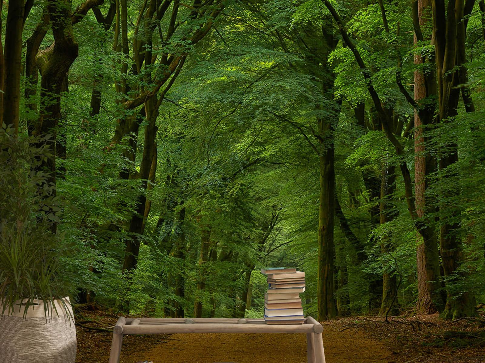 Bomen - Weg door het bos - Slaapkamer 5
