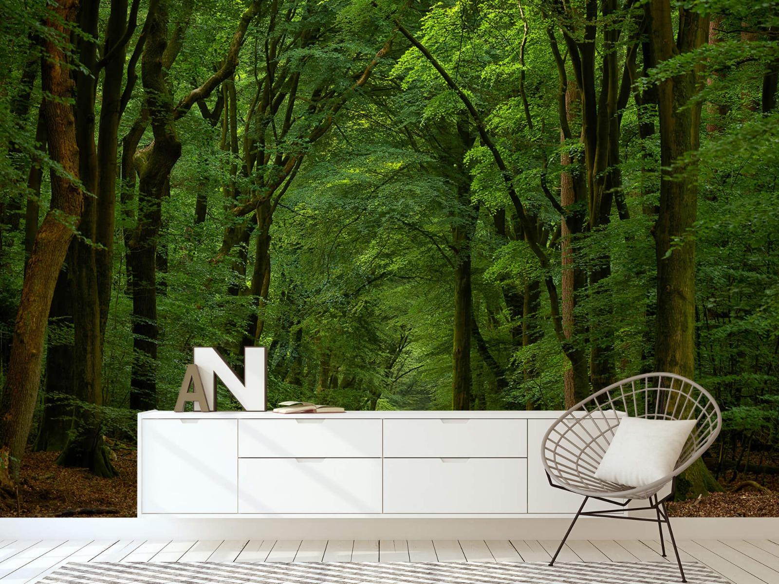 Bomen - Weg door het bos - Slaapkamer 1