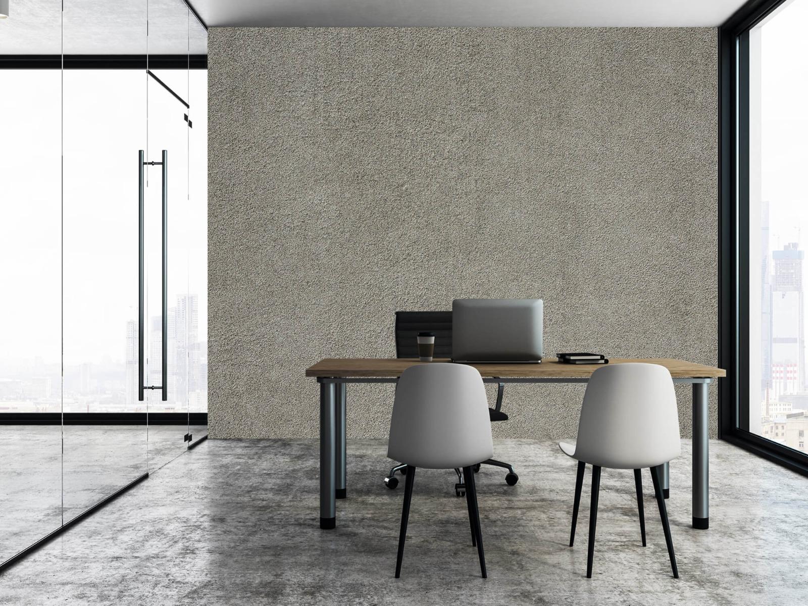 Betonlook behang - Betonnen muur met fijne steentjes - Kantoor 3