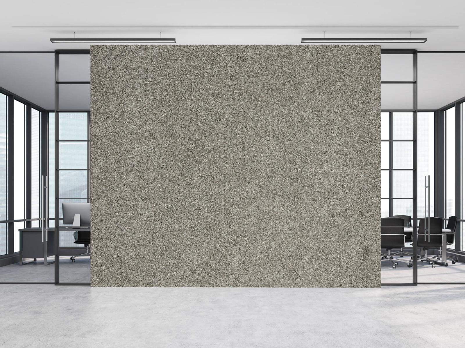 Betonlook behang - Betonnen muur met fijne steentjes - Kantoor 8