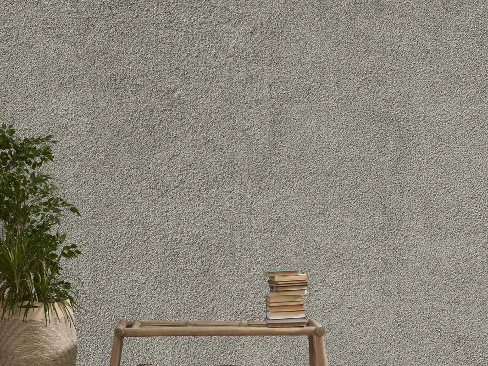 Betonlook behang - Betonnen muur met fijne steentjes - Kantoor 20
