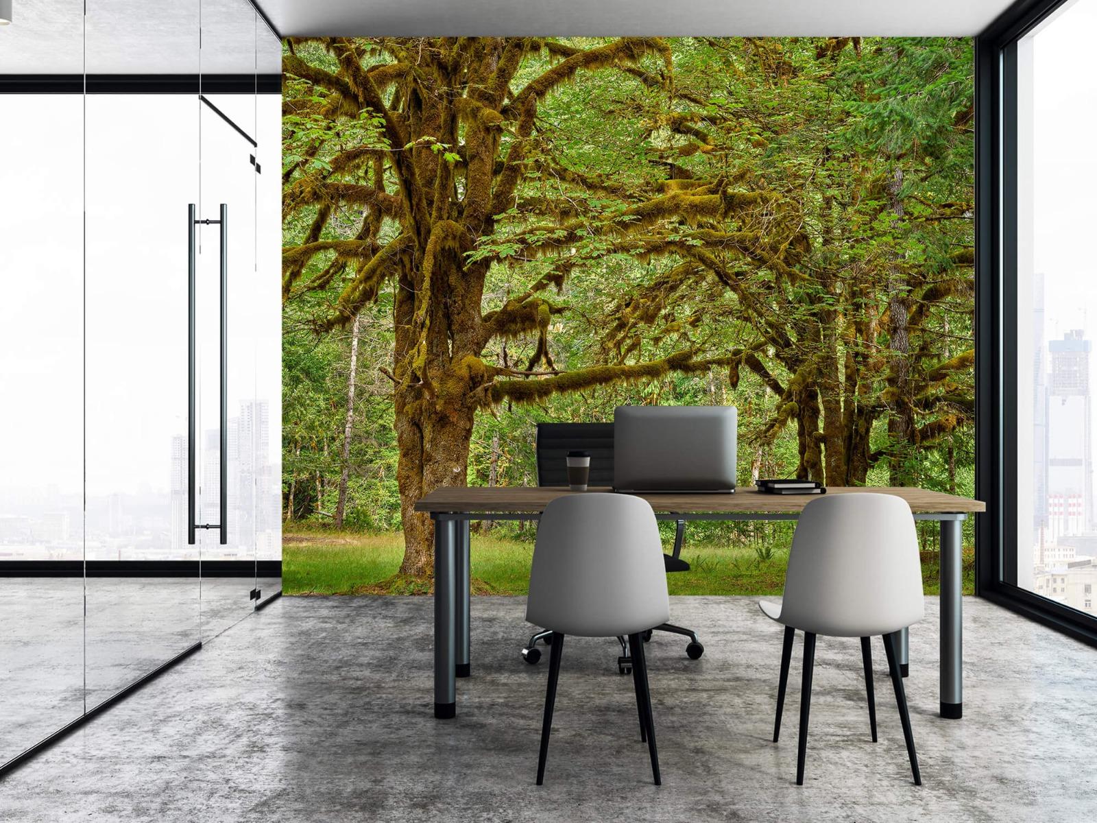 Bos behang - Twee oude bomen - Wallexclusive - Slaapkamer 6