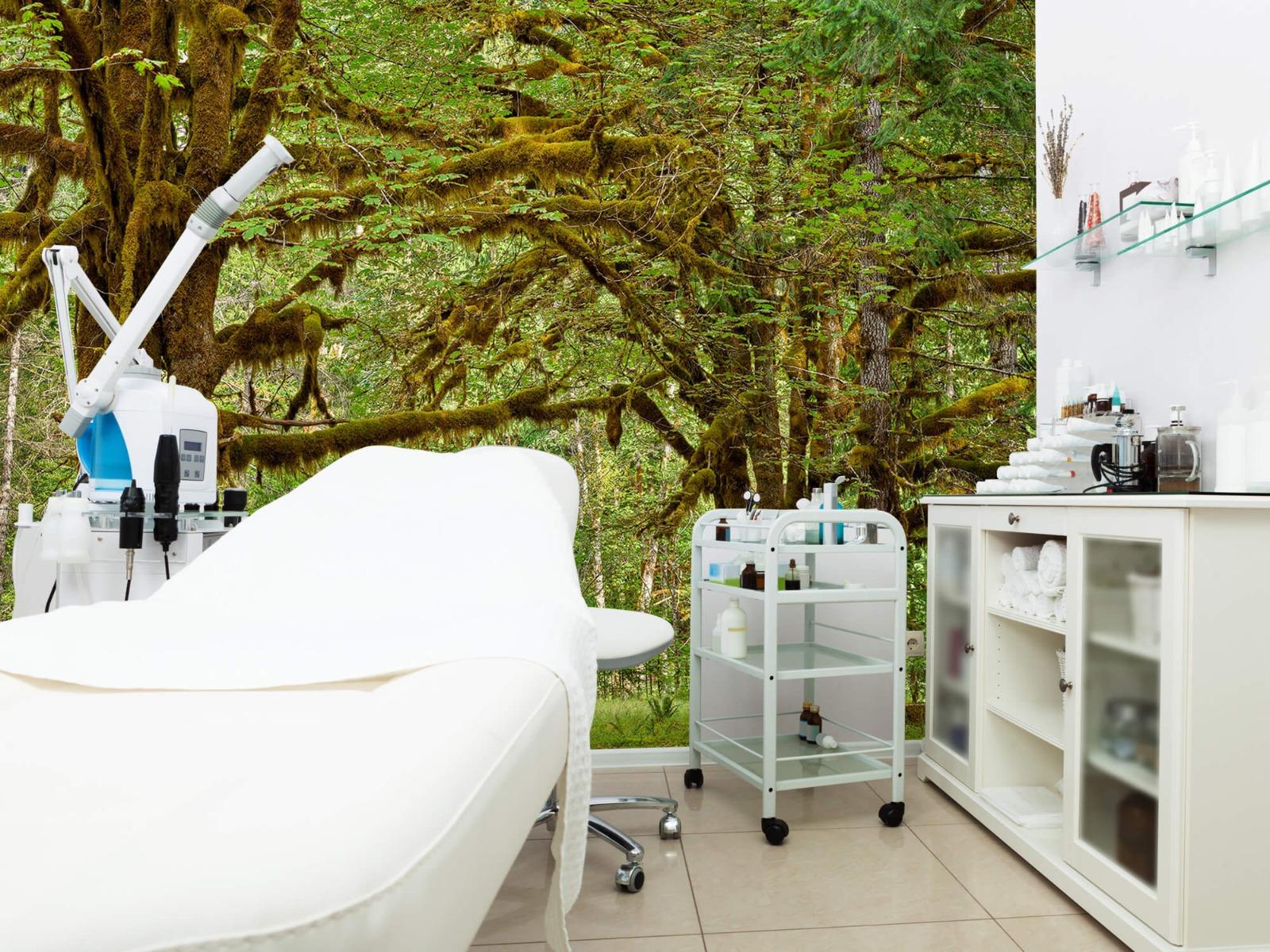 Bos behang - Twee oude bomen - Wallexclusive - Slaapkamer 7