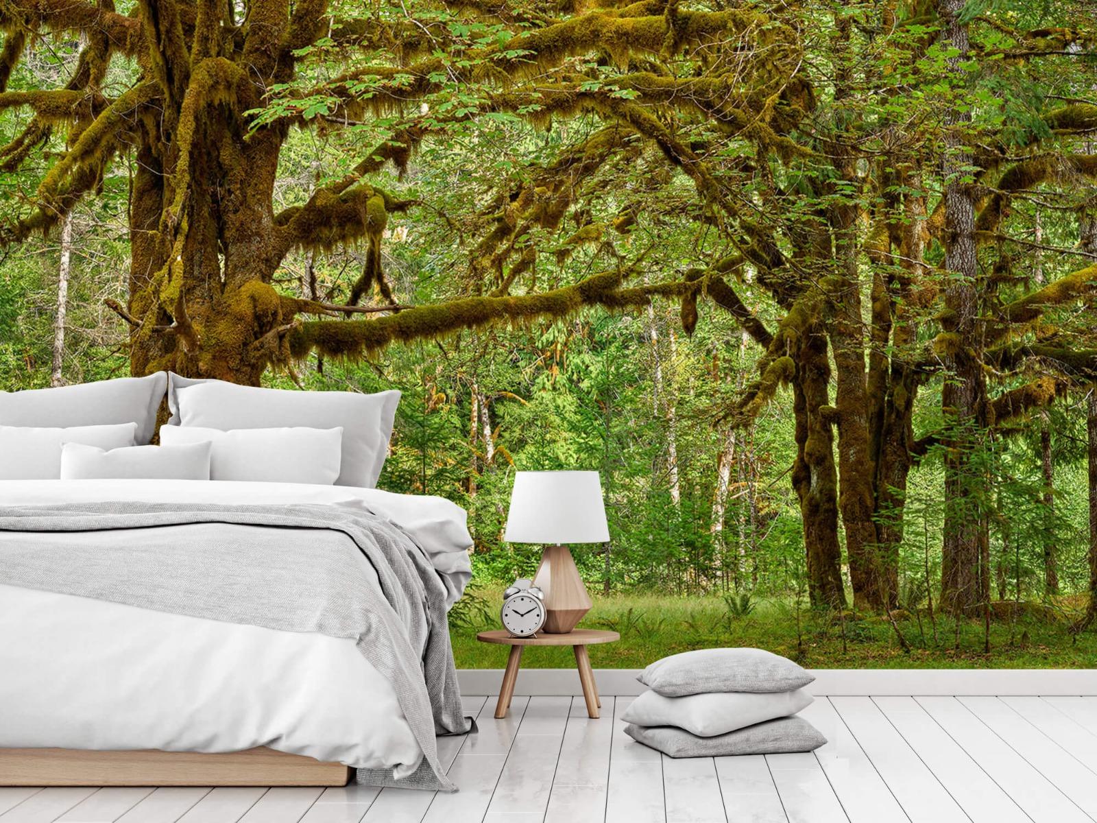 Bos behang - Twee oude bomen - Wallexclusive - Slaapkamer 15