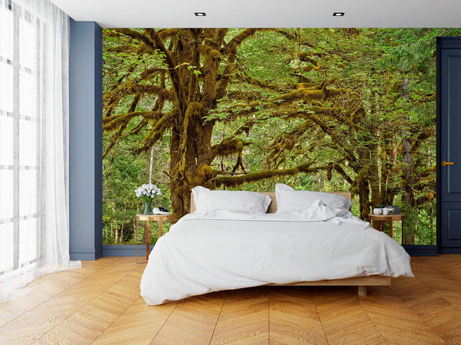 Bos behang - Twee oude bomen - Wallexclusive - Slaapkamer 16