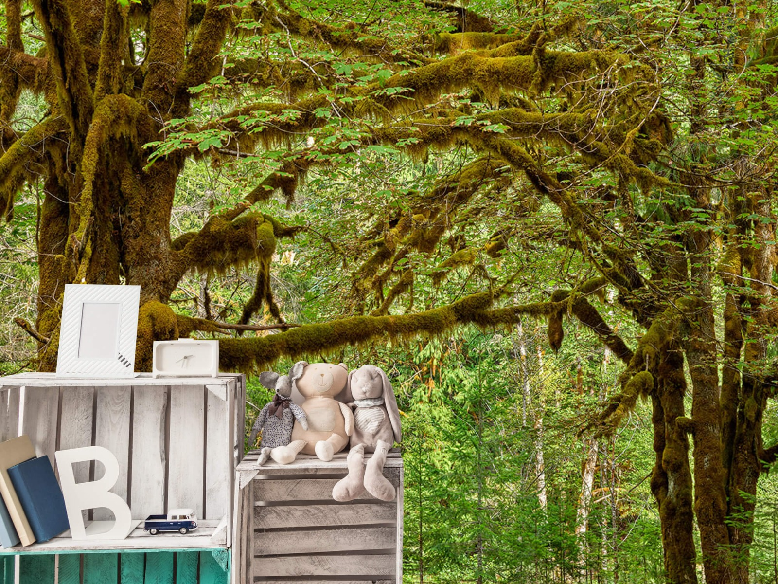 Bos behang - Twee oude bomen - Wallexclusive - Slaapkamer 20