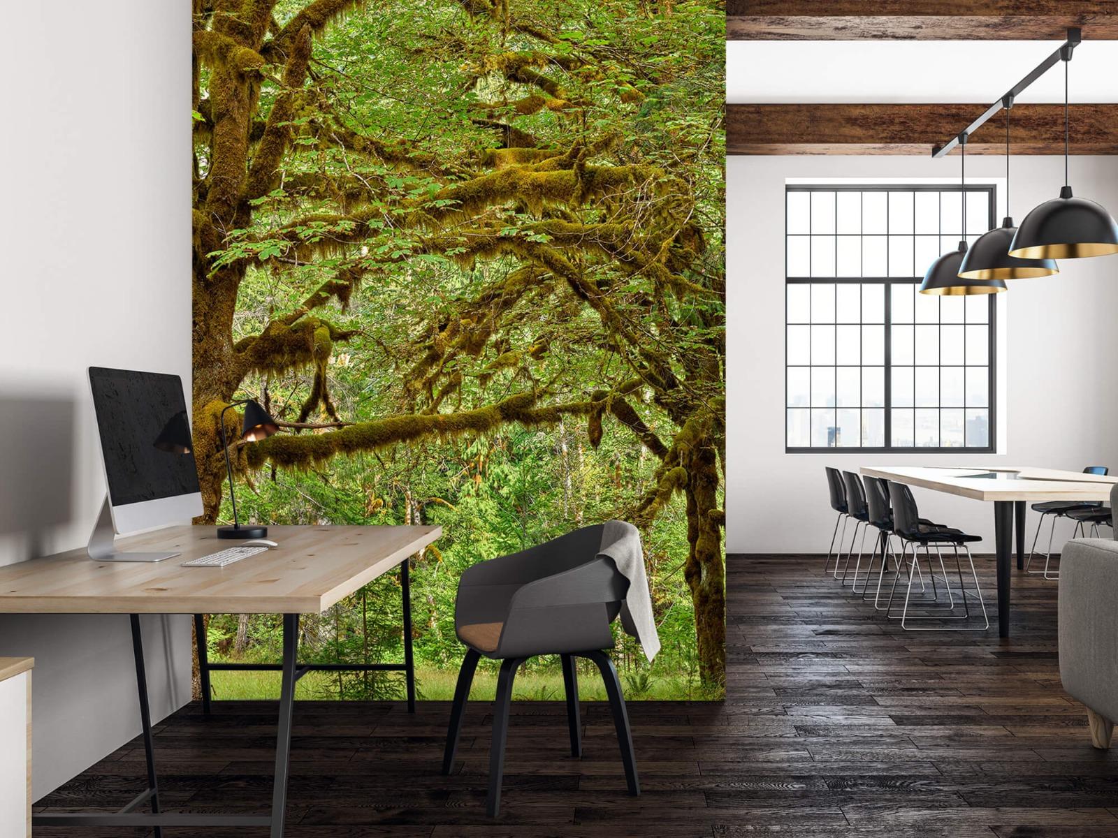 Bos behang - Twee oude bomen - Wallexclusive - Slaapkamer 22