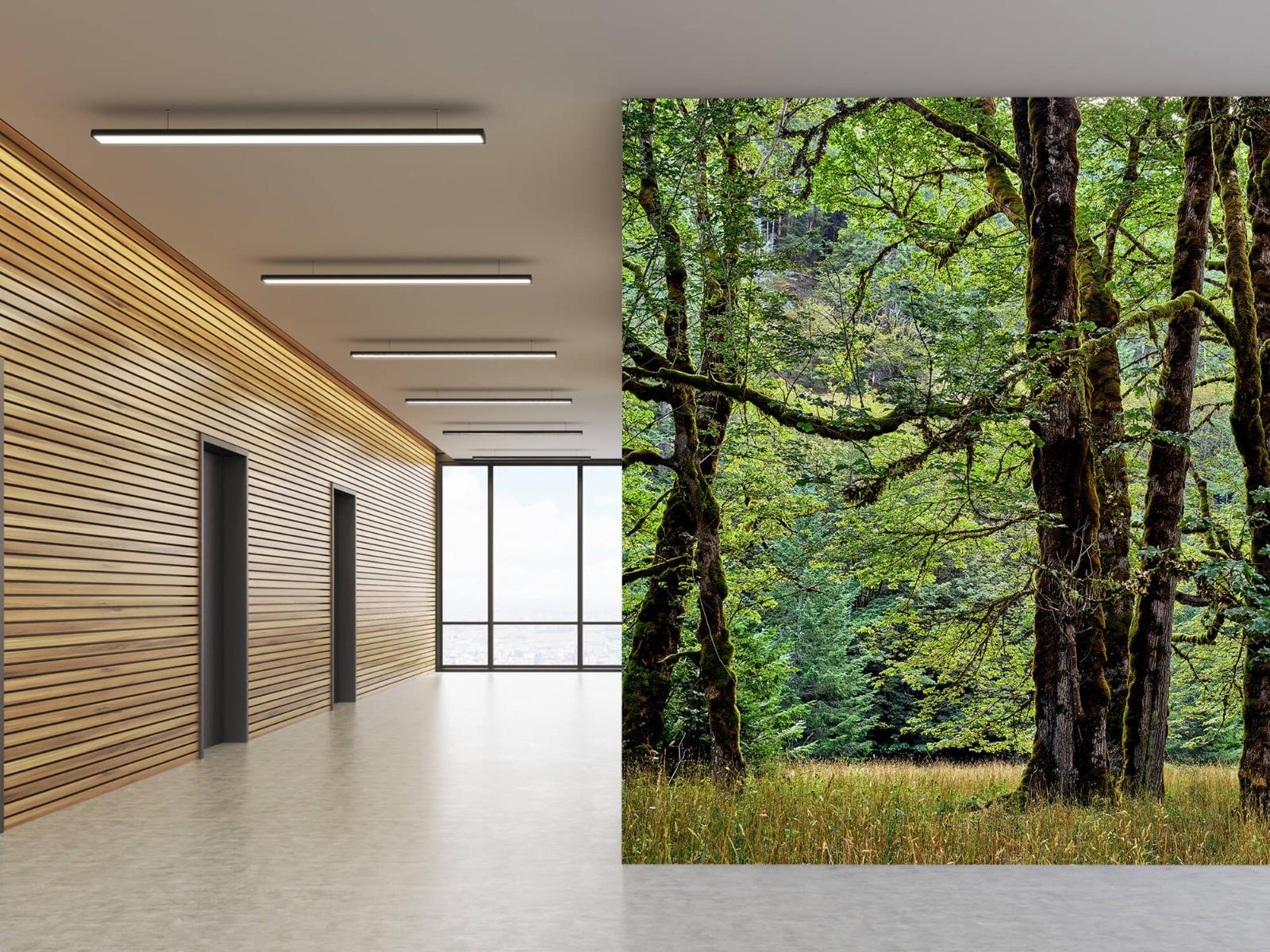 Bomen - Bomen met mos - Wallexclusive - Slaapkamer 7
