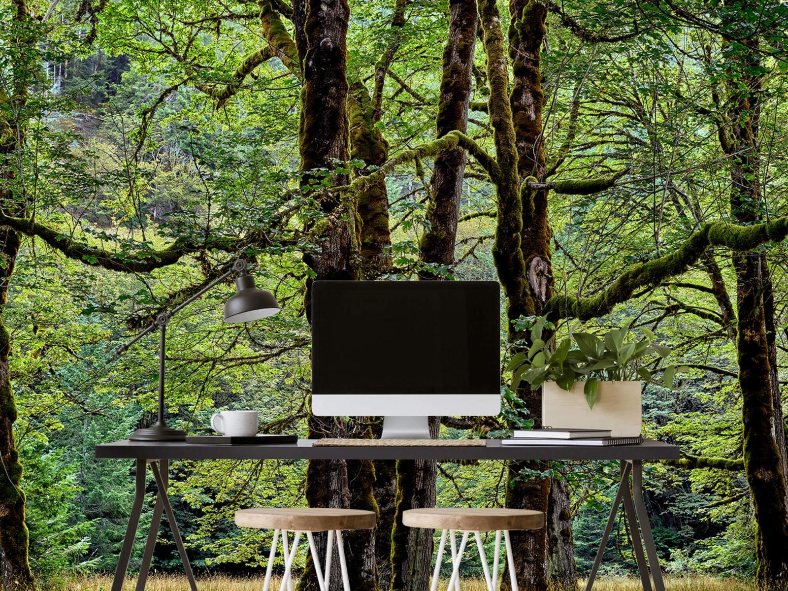 Bomen - Bomen met mos - Wallexclusive - Slaapkamer 8