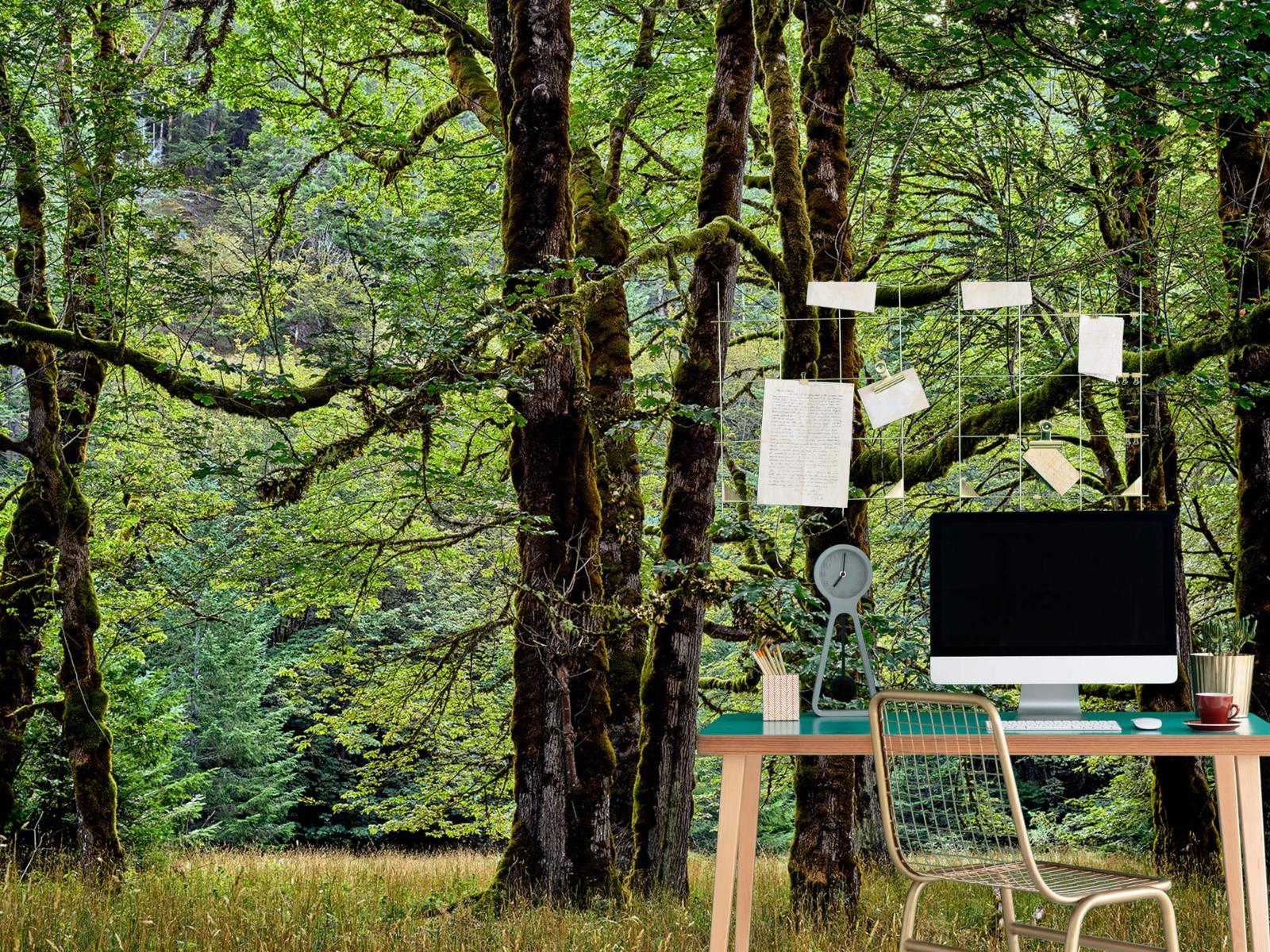 Bomen - Bomen met mos - Wallexclusive - Slaapkamer 9
