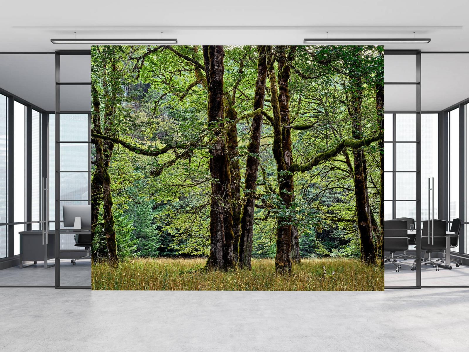 Bomen - Bomen met mos - Wallexclusive - Slaapkamer 10