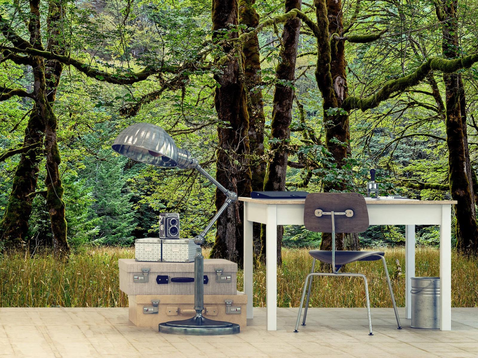 Bomen - Bomen met mos - Wallexclusive - Slaapkamer 11