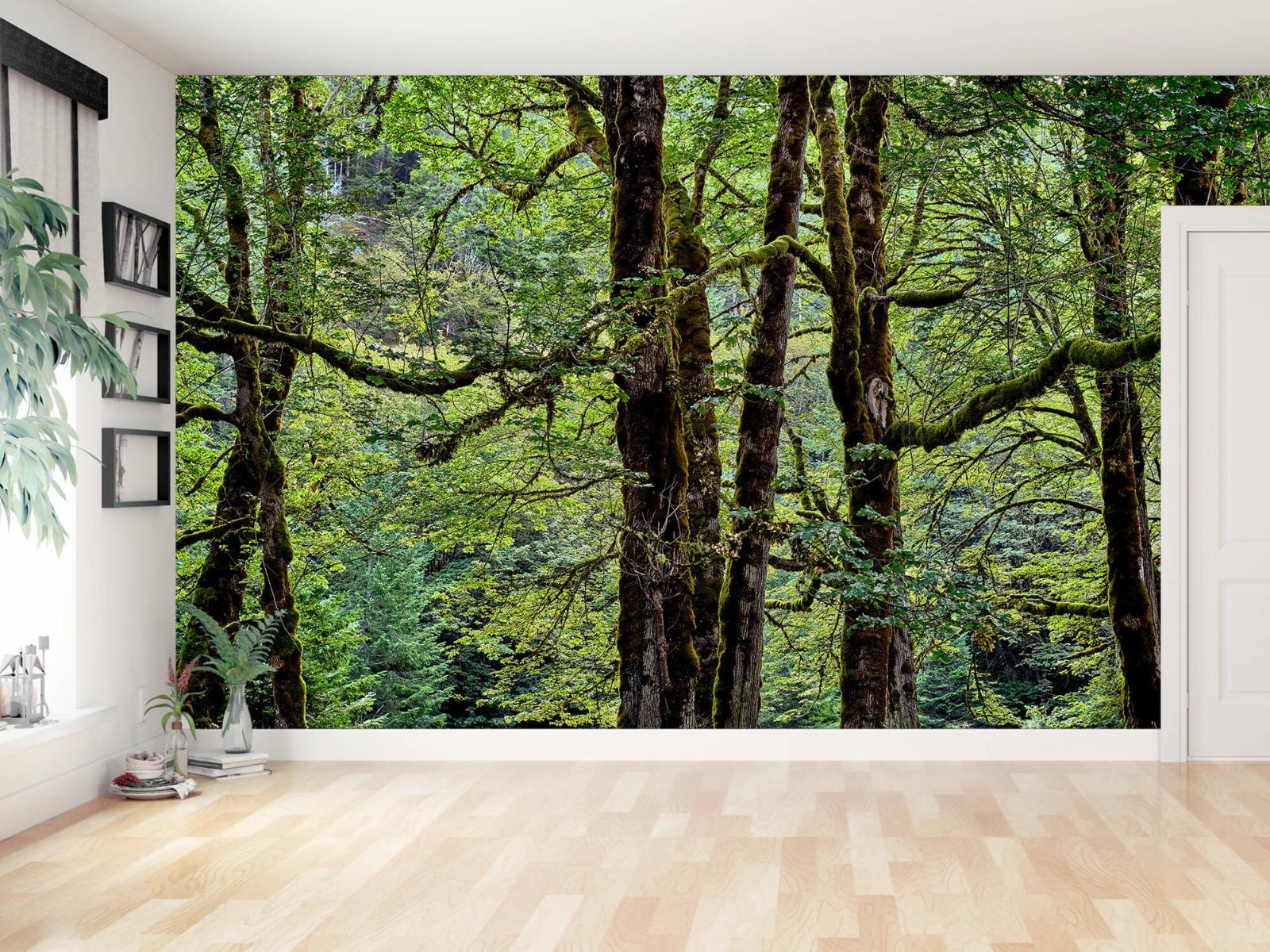 Bomen - Bomen met mos - Wallexclusive - Slaapkamer 13