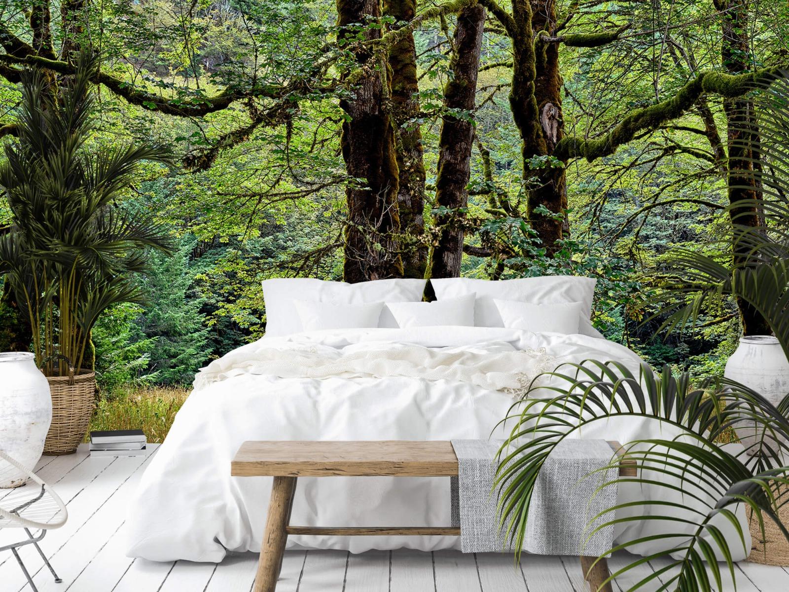 Bomen - Bomen met mos - Wallexclusive - Slaapkamer 1