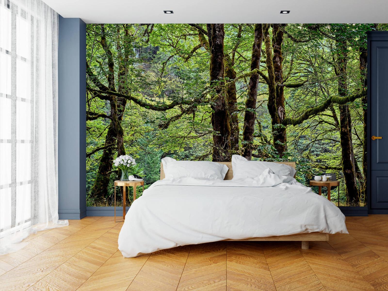 Bomen - Bomen met mos - Wallexclusive - Slaapkamer 16