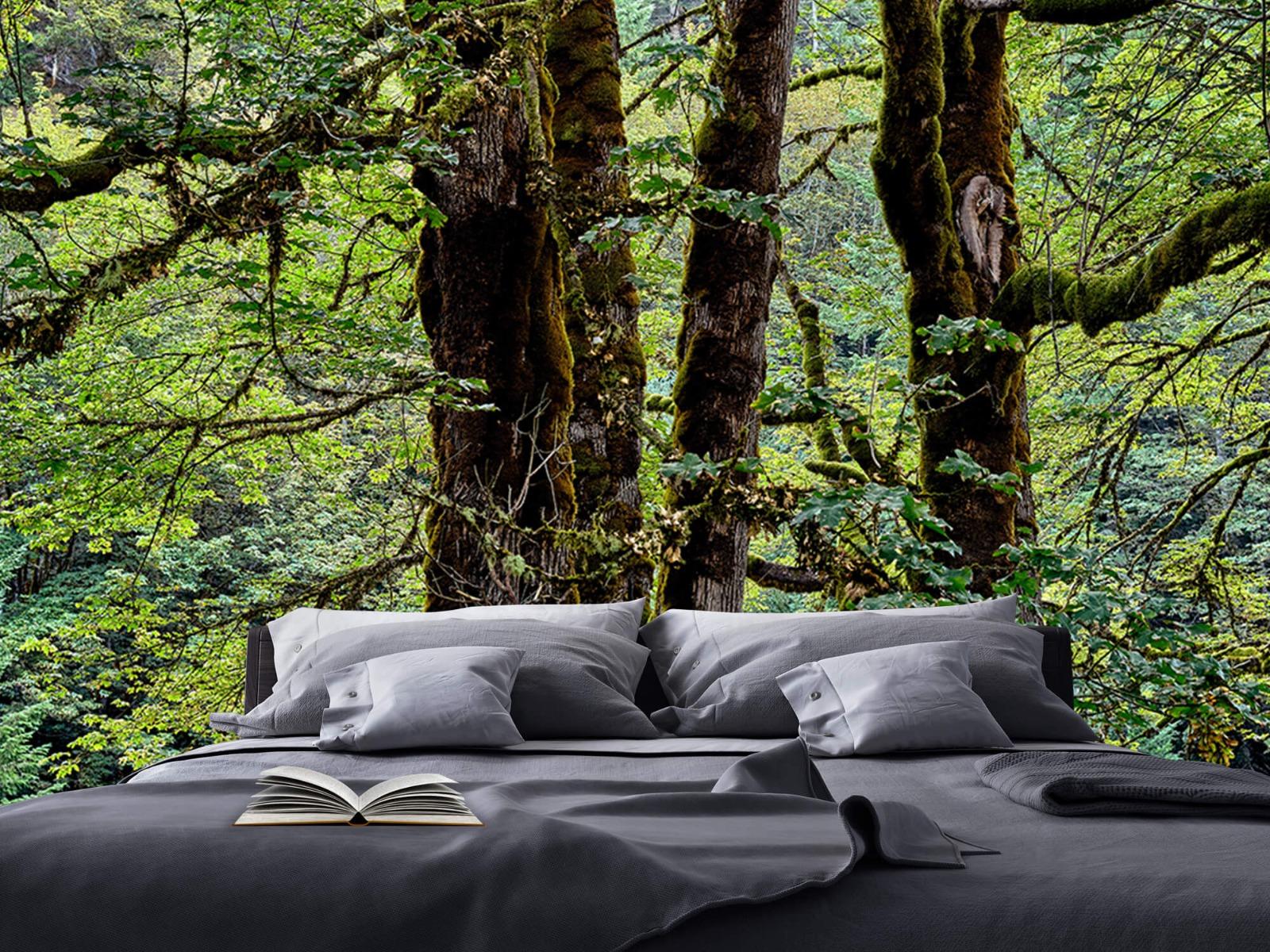 Bomen - Bomen met mos - Wallexclusive - Slaapkamer 18