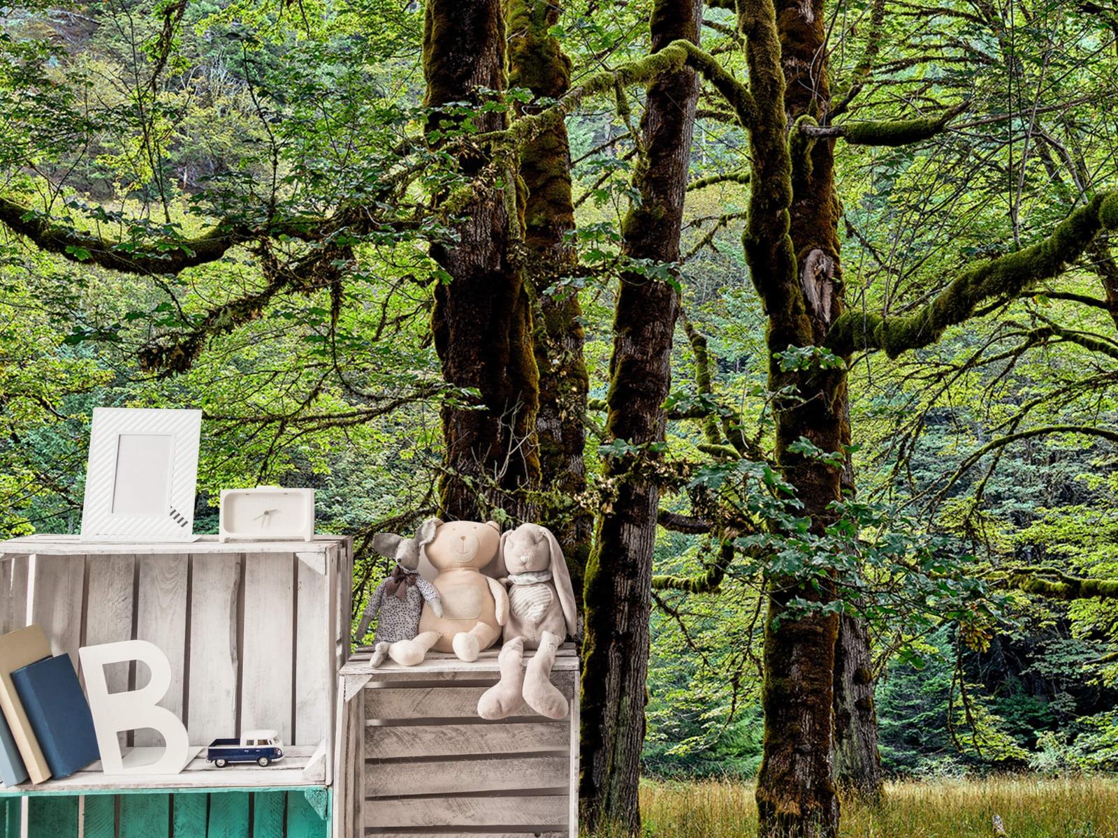 Bomen - Bomen met mos - Wallexclusive - Slaapkamer 19