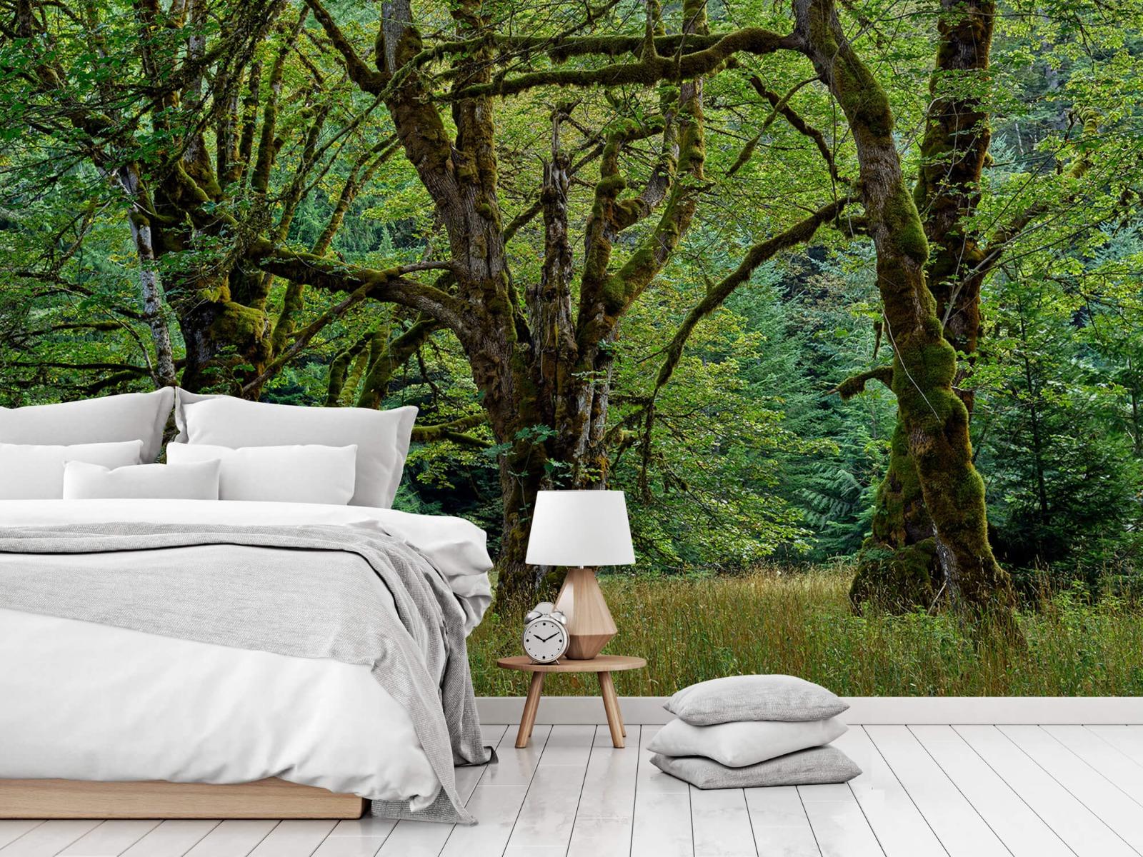 Bomen - Oude bomen - Wallexclusive - Slaapkamer 15