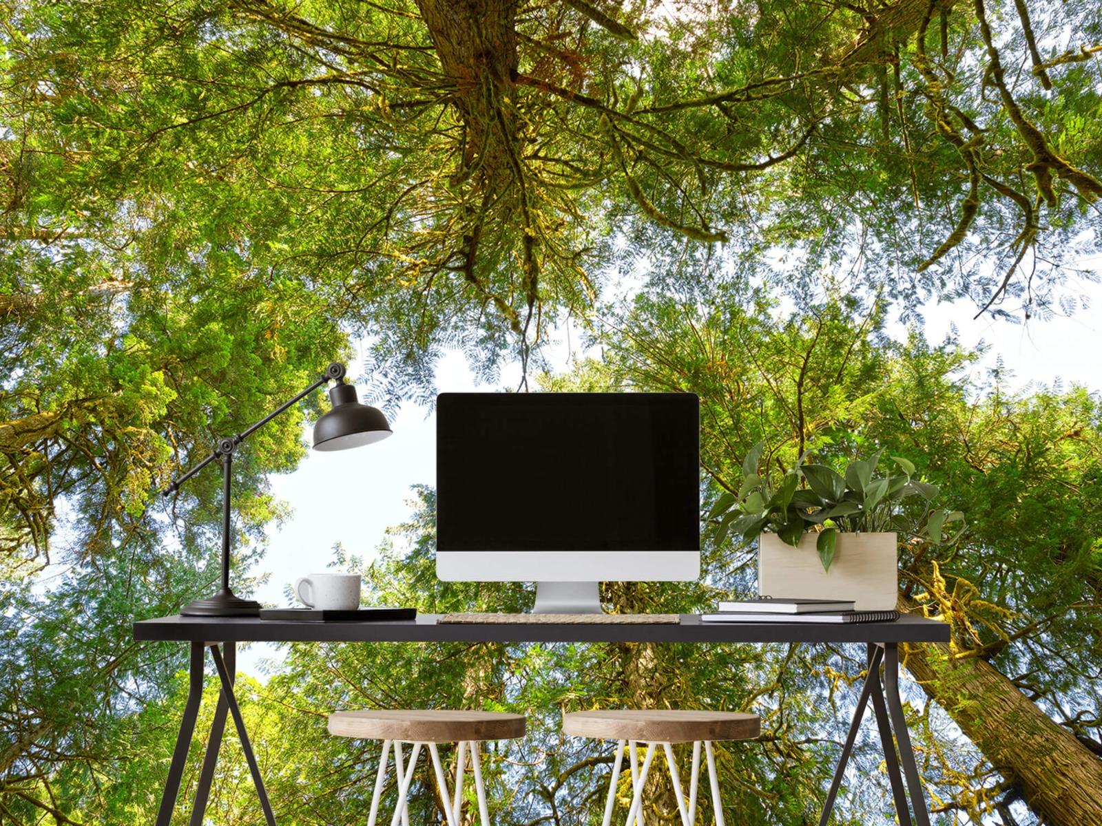 Bomen - Bomen en bladeren - Wallexclusive - Slaapkamer 9