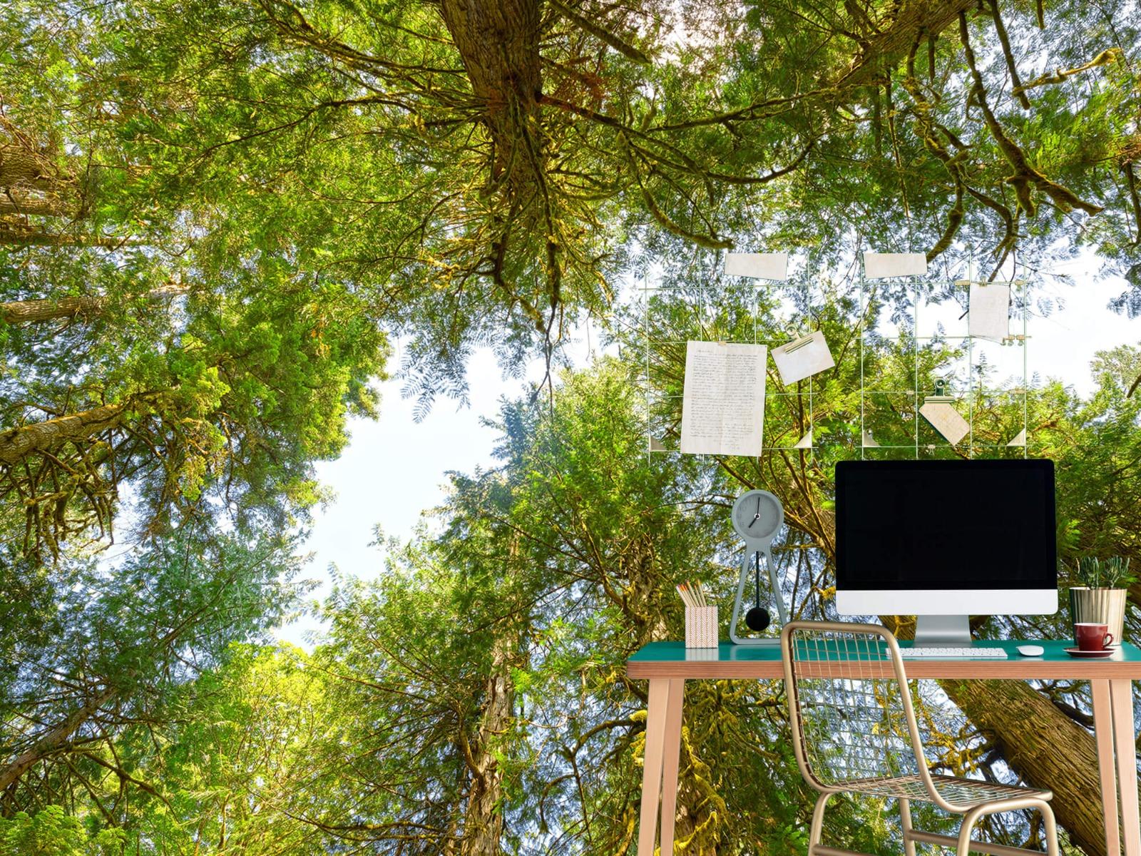 Bomen - Bomen en bladeren - Wallexclusive - Slaapkamer 10