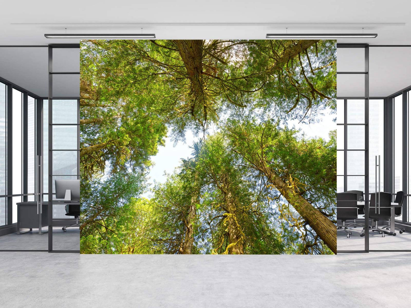Bomen - Bomen en bladeren - Wallexclusive - Slaapkamer 11