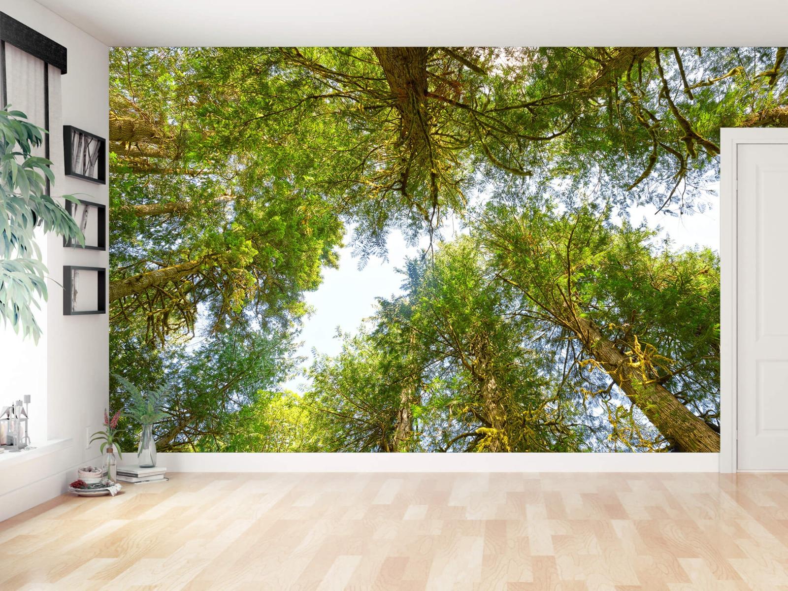Bomen - Bomen en bladeren - Wallexclusive - Slaapkamer 13