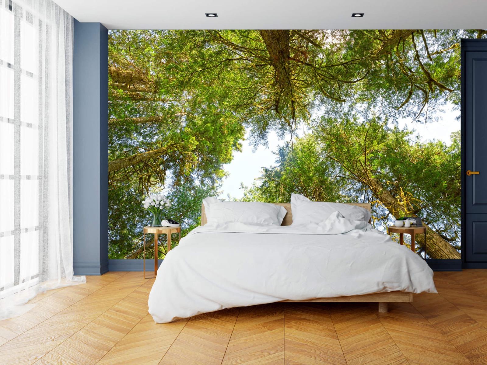 Bomen - Bomen en bladeren - Wallexclusive - Slaapkamer 17