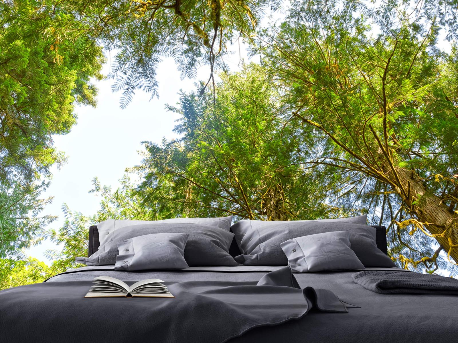 Bomen - Bomen en bladeren - Wallexclusive - Slaapkamer 19