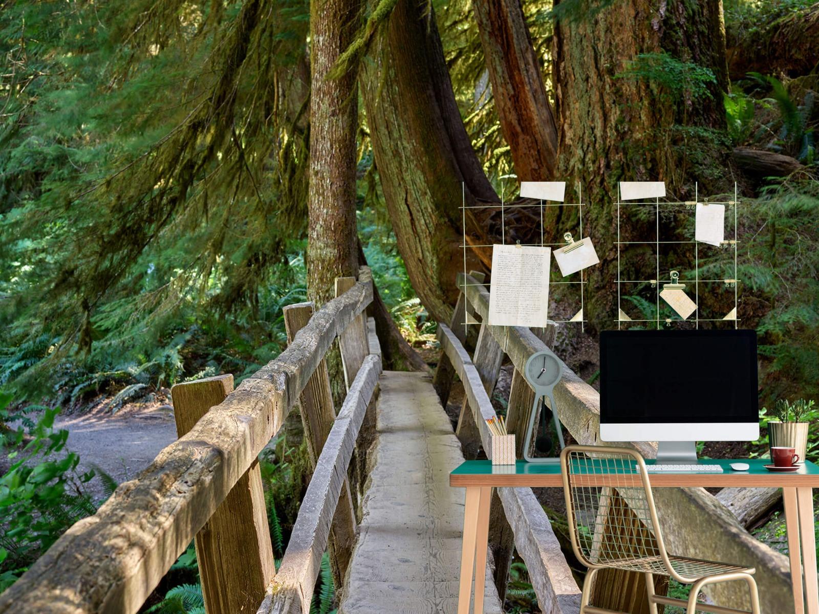 Landschap - Houten brug door het bos - Wallexclusive - Woonkamer 8