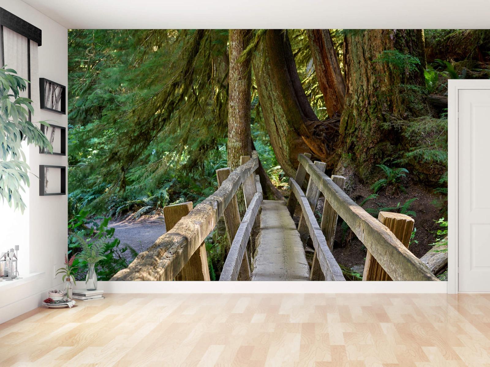 Landschap - Houten brug door het bos - Wallexclusive - Woonkamer 12