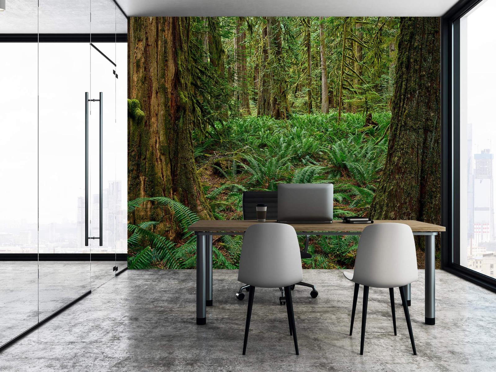 Bos behang - Varens en bomen - Wallexclusive - Slaapkamer 3