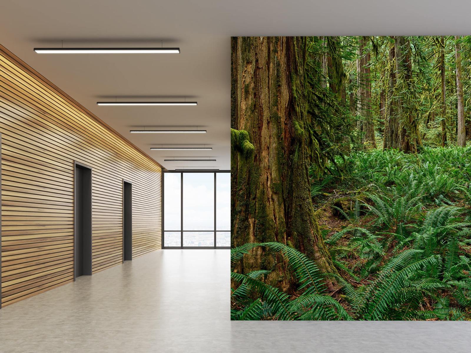Bos behang - Varens en bomen - Wallexclusive - Slaapkamer 5