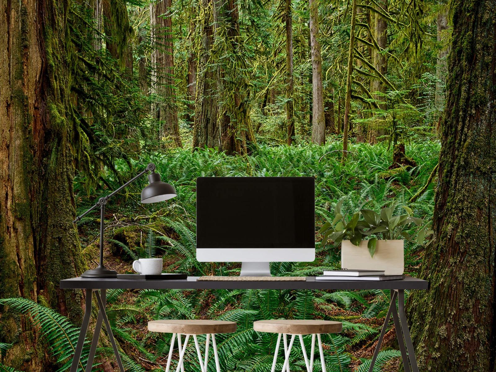Bos behang - Varens en bomen - Wallexclusive - Slaapkamer 6