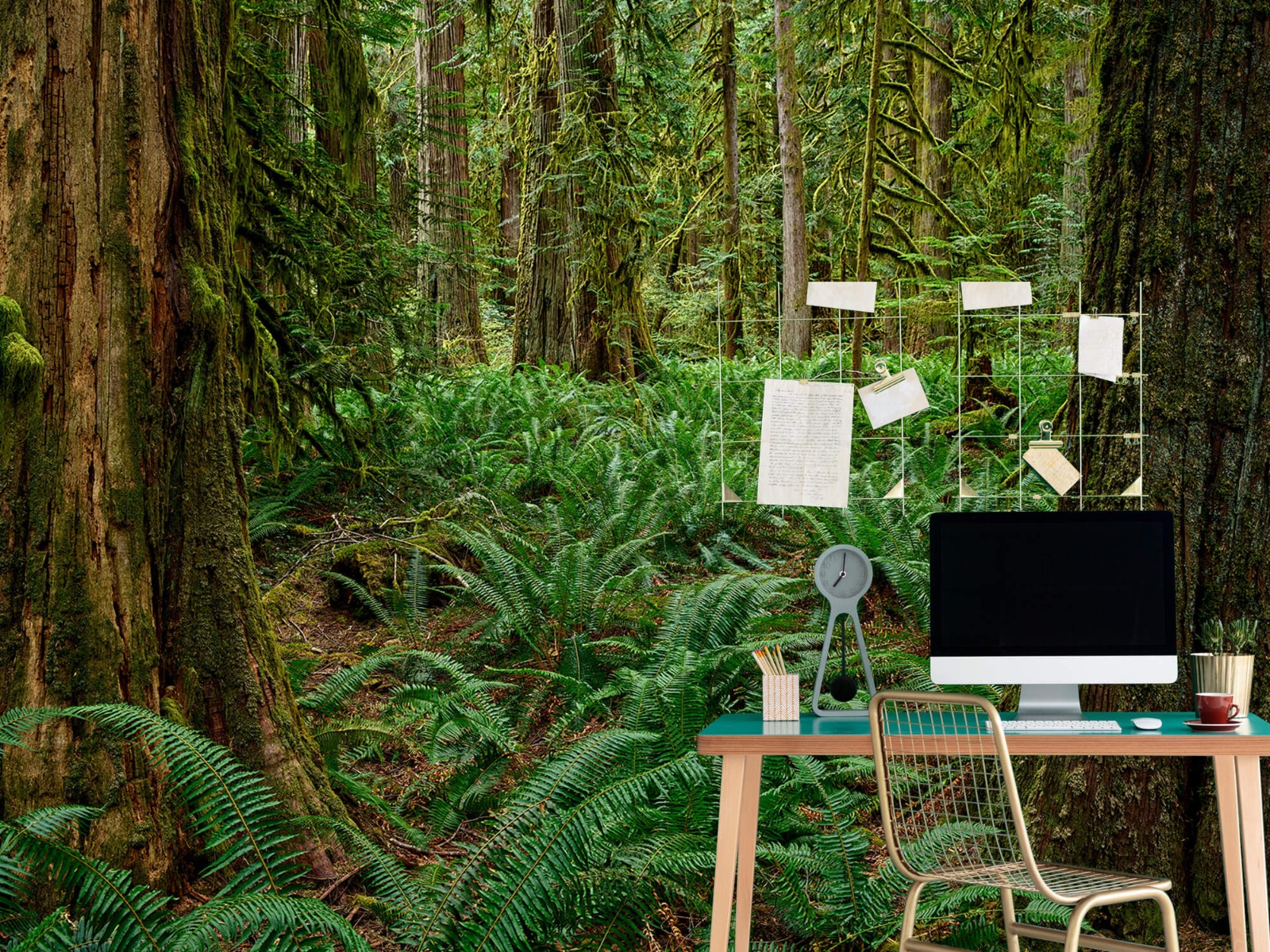 Bos behang - Varens en bomen - Wallexclusive - Slaapkamer 7
