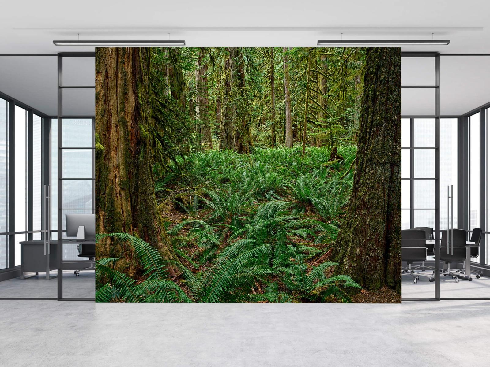 Bos behang - Varens en bomen - Wallexclusive - Slaapkamer 8