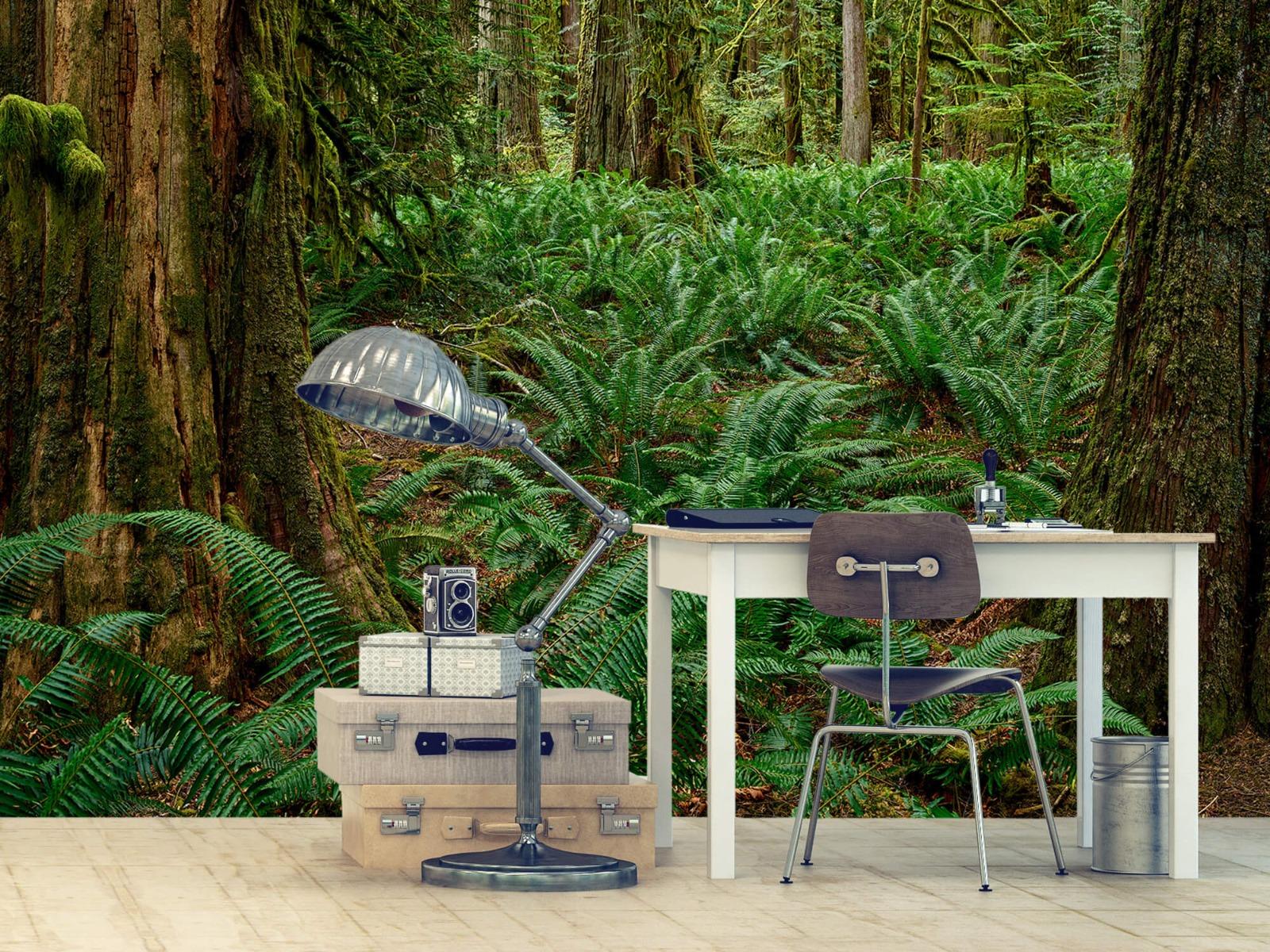 Bos behang - Varens en bomen - Wallexclusive - Slaapkamer 9